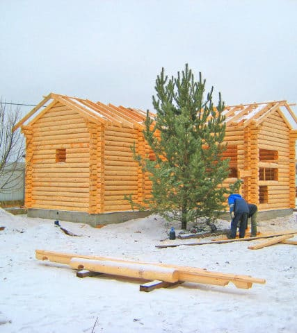 Зимний лес. Почему стоит заказать сруб из зимнего леса?